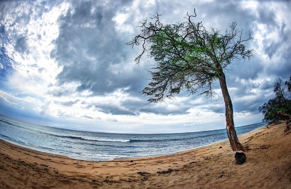 beach eye