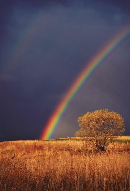 epic rainbow